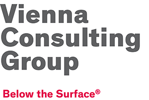 VCG – Vienna Consulting Group